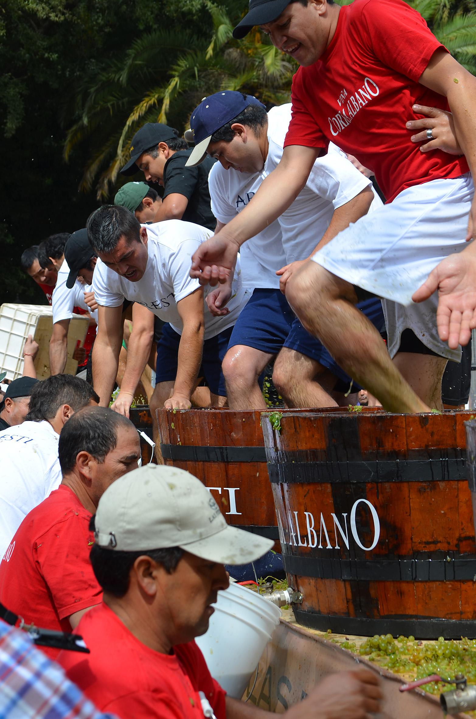 Crédito_Ruta del Vino Curicó_1