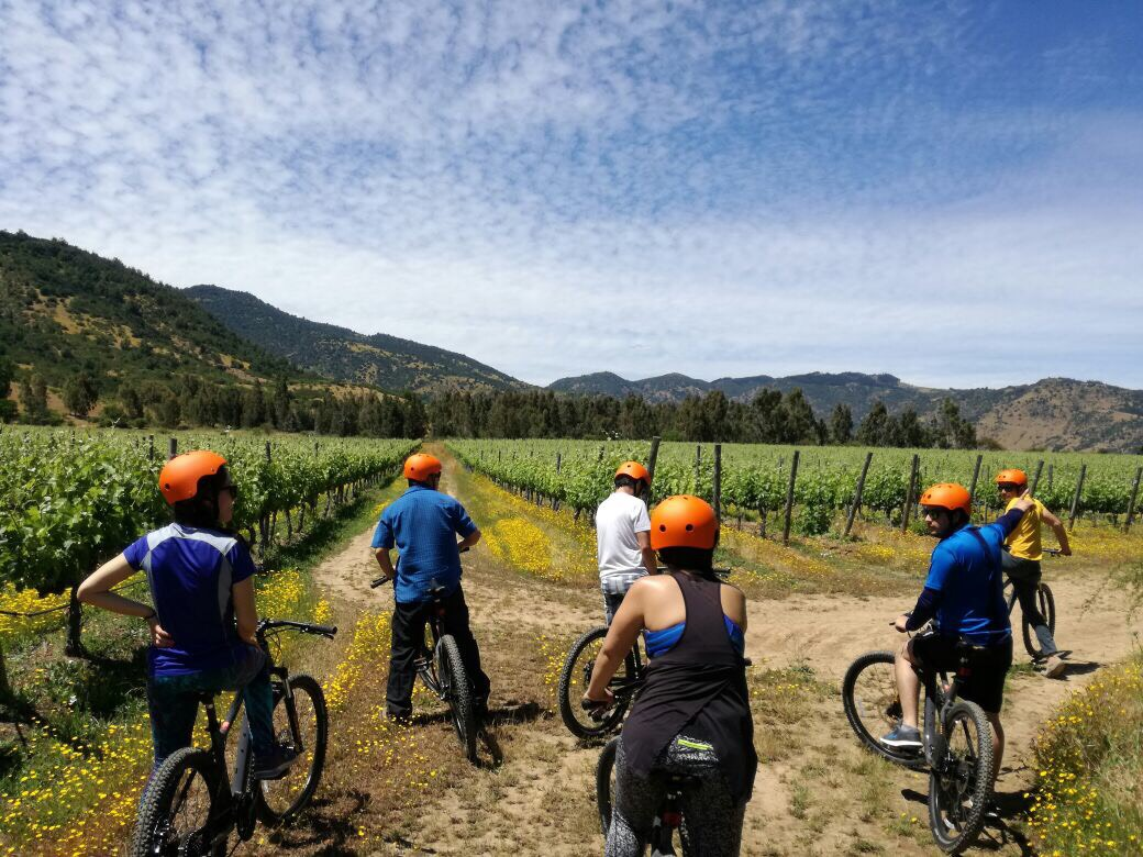 Santa Cruz, Tour Bicicletas